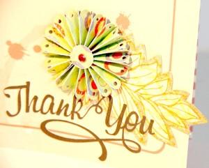 thank you dec dtls