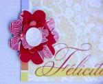 Carte Felicitations Dtls - Mauri